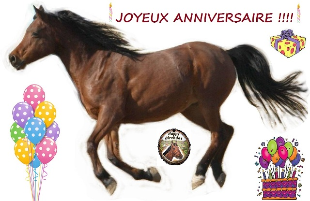 Fabuleux cartes anniversaire cheval - Birthday cards horse - siteducheval.com AN35