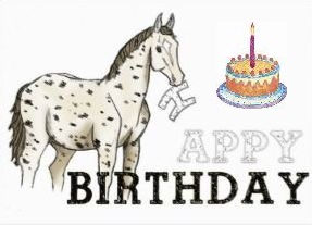 greeting card horse happy birthday