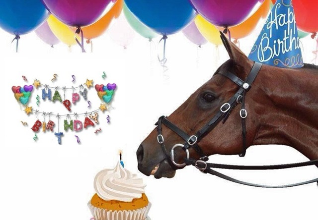 happy birthday horse card with balloons